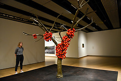 "© Licensed to London News Pictures. 02/03/2020. LONDON, UK. A staff member views ""because I could not stop"", 2002, by Anya Gallacio. Preview of ""Among The Trees"" exhibition at the Hayward Gallery on the Southbank.  Artworks by 38 international artists explore man's relationship with trees and forests at a time when the destruction of forests is accelerating in show which runs 4 March to 17 May 2020.  Photo credit: Stephen Chung/LNP"