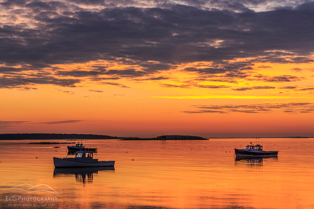Lobster boats in a harbor in South Thomaston, Maine at sunrise.