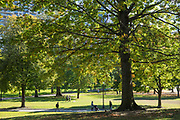People strolling in Boston Common by the Public Garden city park in Boston, Massachusetts, USA