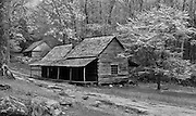 "A monochrome study of the Noah ""Bud"" Ogle cabin on the Roaring Fork Trail, which is listed in the National Register of Historic Places. Great Smoky Mountains National Park."