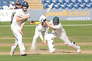 Harry Dearden drives during the Specsavers County Champ Div 2 match between Glamorgan County Cricket Club and Leicestershire County Cricket Club at the SWALEC Stadium, Cardiff, United Kingdom on 19 September 2019.