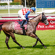 Largent Du Bonheur (CP. Lemaire) in Chantilly, France 10/09/02017, photo: Zuzanna Lupa