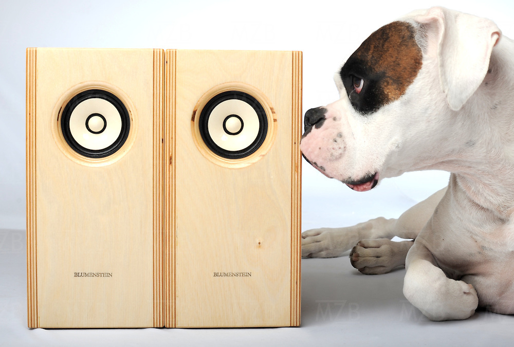 Orca and Kiwi speakers from Blumenstein Ultra-Fi, handmade by Clark Blumenstein. Featuring Fostex full-range drivers and beautiful birch enclosures.