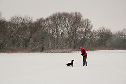 © under license to London News Pictures. 14/11/2010. Woman plays with dog in the snow in Huntingdon Cambridgeshire. Photo credit : Jason Patel/LNP