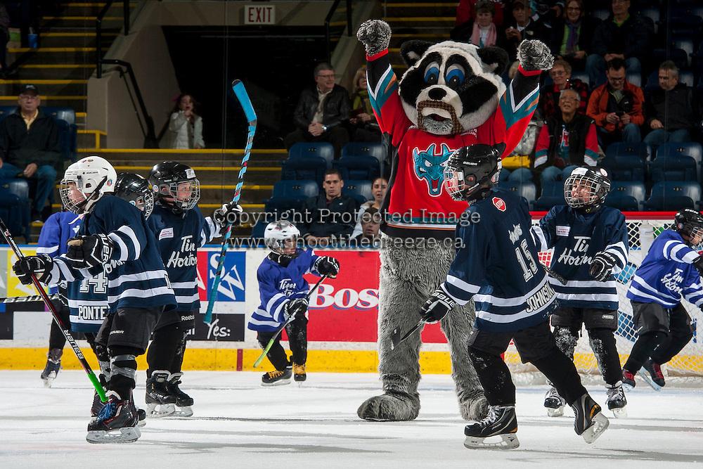 KELOWNA, CANADA - NOVEMBER 15: Rocky Racoon, the mascot of the Kelowna Rockets and mini minor hockey players on November 15, 2016 at Prospera Place in Kelowna, British Columbia, Canada.  (Photo by Marissa Baecker/Shoot the Breeze)  *** Local Caption ***