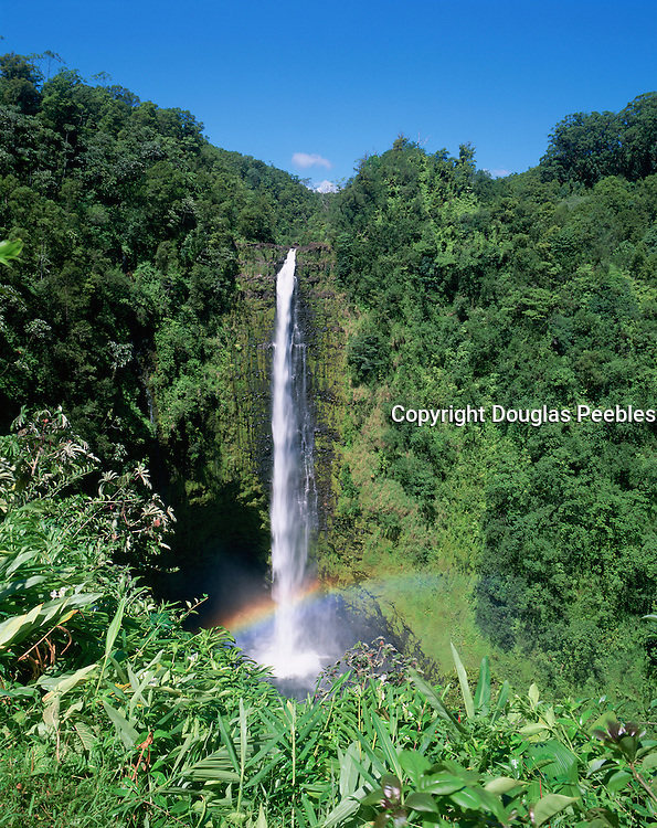 Akaka Falls, Hamakua Coast, Island of Hawaii, Hawaii, USA<br />