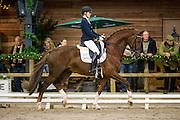Madeleine Witte Vrees - Charmeur<br /> KNHS/KWPN Hengstencompetitie 2014/2015<br /> © DigiShots