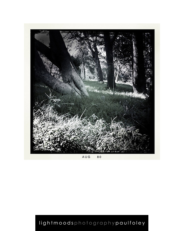 """Sample layout for a camera phone image suitable for an 8"""" x 10"""" frame.<br /> Actual image fits within 200 x 150mm. The size will vary with the format of your picture. This square image is 150mm x 150mm.<br /> The 'Lightmoods' watermark is not printed"""
