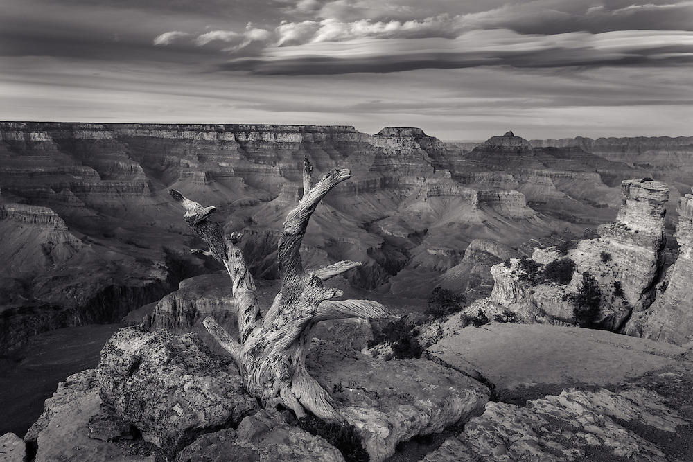 black and white landscape of Grand Canyon National Park from South Rim, Yaki Point, Arizona