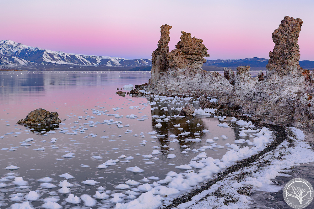 The snow covered Eastern Sierras and a vibrant sunrise provide a stunning backdrop for the magnificent tufas at Mono Lake, Lee Vining, California.