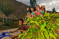 A farm family with a load of corn ride on their tractor, Qonggyai, Lhoka (Shannan) Prefecture, Tibet (Xizang), China.