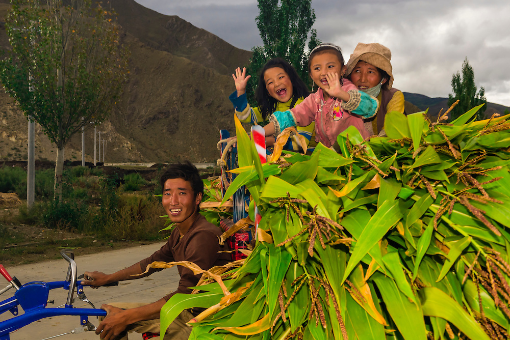 A farm family with a load of corn ride on their tractor, Qonggyai, Lhoka (Shannan) Prefecture, Tibet (Xizang), China.