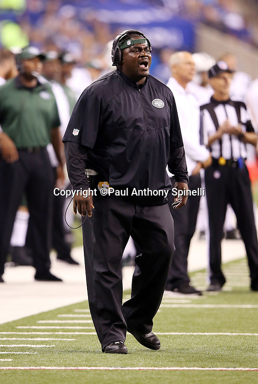 New York Jets defensive line coach Pepper Johnson yells out from the sideline during the 2015 NFL week 2 regular season football game against the Indianapolis Colts on Monday, Sept. 21, 2015 in Indianapolis. The Jets won the game 20-7. (©Paul Anthony Spinelli)