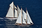 France Saint - Tropez October 2013, Classic yachts racing at the Voiles de Saint - Tropez<br /> <br /> Start Classic Yachts Regatta<br /> <br /> <br /> C,/241,ASCHANTI ,35,GOELETTE MARCONI/1954,HENRI GRUBER