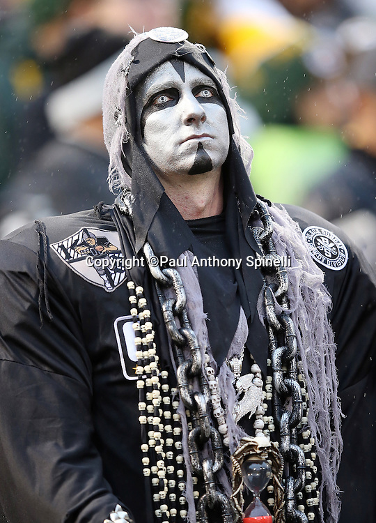An Oakland Raiders fan wears a scary looking costume during the Oakland Raiders 2015 week 15 regular season NFL football game against the Green Bay Packers on Sunday, Dec. 20, 2015 in Oakland, Calif. The Packers won the game 30-20. (©Paul Anthony Spinelli)