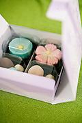 Wagashi, Japanese-style confections.