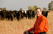 OSU Animal Science professor Gerald Horn looking over cattle on the south range.  Research he is conducting on feeding methods and relationship to meat marbling.
