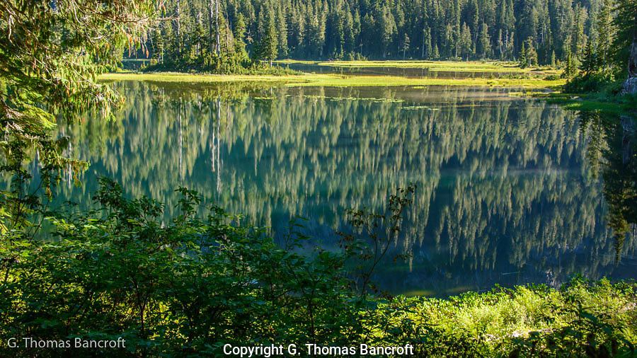 The water was flat in the early morning and reflected the forests of the surrounding slopes.  I found an opening in the forest to peer down onto the lake.  A trout hit the surface near me.  A shallow marsh was on the far side of the water. I would love to have a had kayak to explore the shore of this lake.