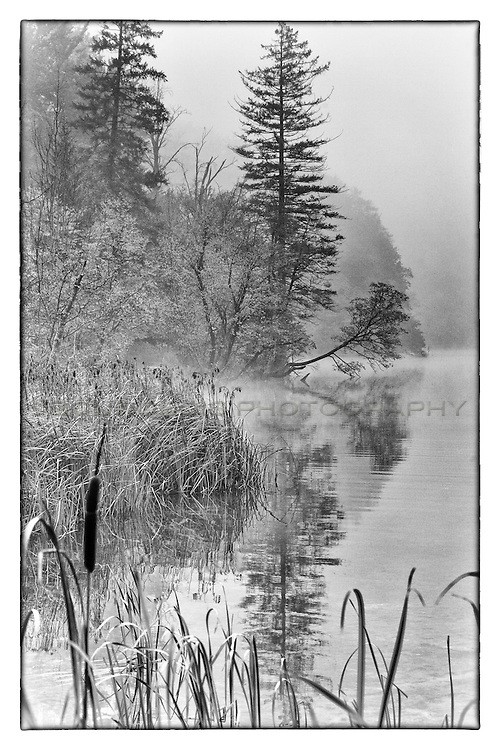 Erie fog and water landscape shot along a trail