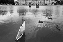 On the Water at Luxembourg Gardens