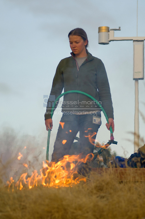 Denver Botanic Gardens, 2008 Controlled burn of native grasses. Anna's Overlook, Sacred  Earth and Plains Gardens.