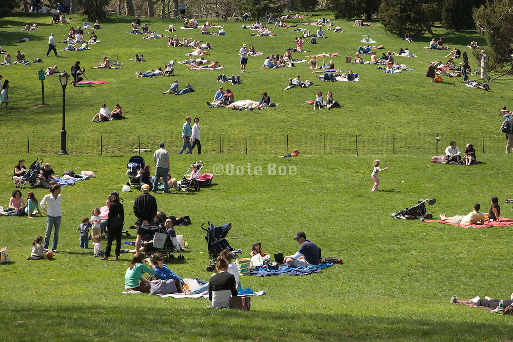 people lying on the grass Central park New York City