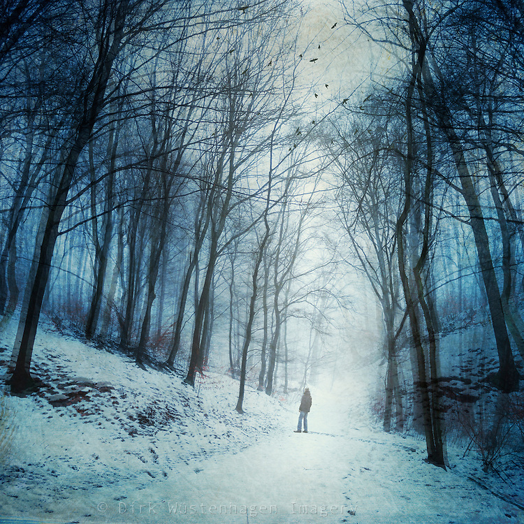 Man in a snow covered forest<br />