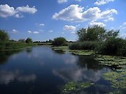Clouds reflected in a pool at the London Wetland Centre in Barnes