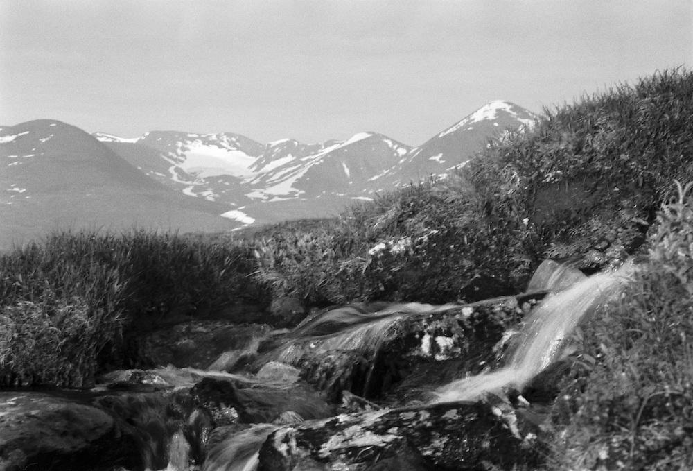 Fjällbäck i Lappland