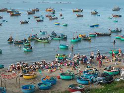 Asia, Vietnam, Mui Ne. Fishermen in traditional round fishing boats called coracles.