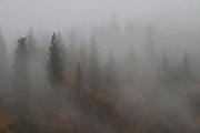 A Morning in Yosemite