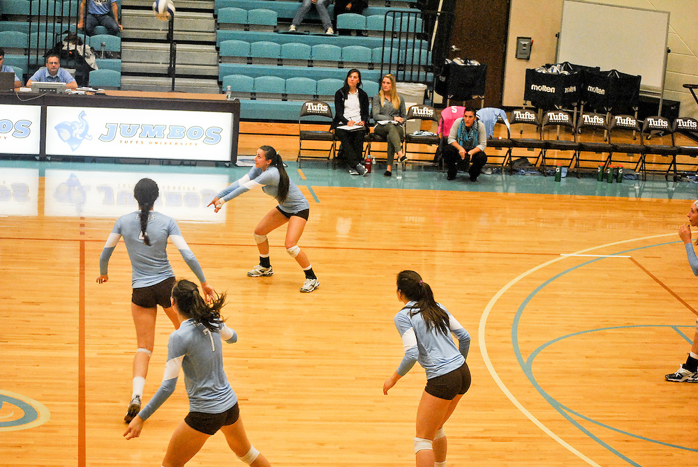 10/18/2013 - Cousens Gym, Tufts Medford campus - Jumbos prepare to receive the ball during the volleyball home game where Tufts defeats Hamilton 25-12. Caroline Geiling / The Tufts Daily