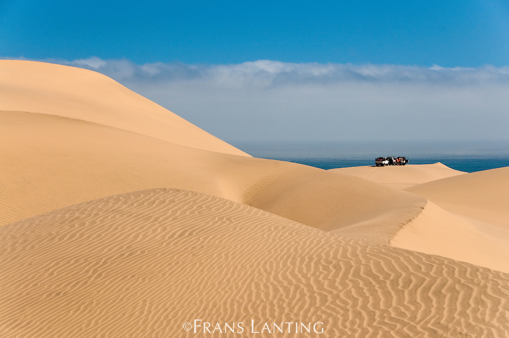 Off-road vehicles in sand dunes near the Atlantic Ocean, Namib-Naukluft National Park, Namibia