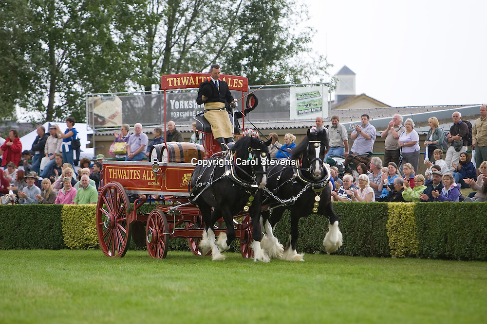 Heavy Horse Pairs Turnouts<br /> Great Yorkshire Show 2010