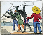 Black slaves working in the cane fields: Holing. Overseer with whip stands over them. West Indies? From Amelia Opie 'The Black Man's Lament; or How to Make Sugar', London, 1826