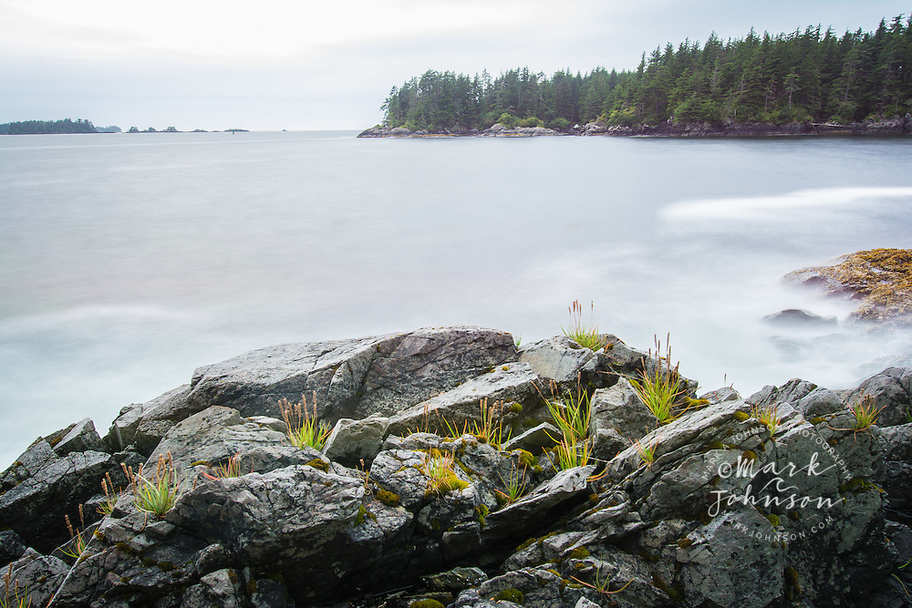 Grasses growing on the rocky shores of Bamdoroshni Island off the coast of Sitka, Alaska