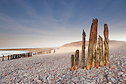 The remains of som old groynes located just along the beach from Porlock Weir, in the direction of Porlock Marshes, with Bossington Hill ni the background.