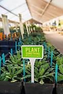 20170512 Spring Plant Sale