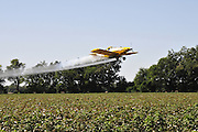Mississippi Delta crop duster Photo©SuziAltman