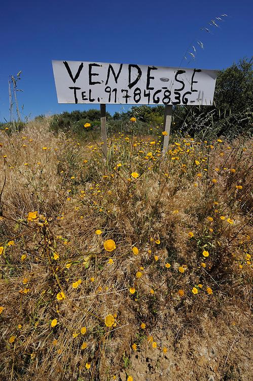 Abandonment, Douro region, Portugal