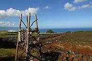 Pu'u O Mahuka Heiau, North Shore,  Waimea, Oahu, Hawaii<br />