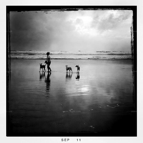 Monsoon season in Goa. iPhone image