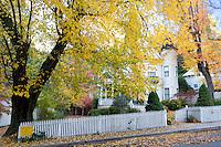 Victorian Home with Fall Foliage, Nevada City, California
