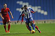 Brighton & Hove Albion midfielder Kazenga LuaLua (30) during the EFL Trophy Southern Group G match between U23 Brighton and Hove Albion and Leyton Orient at the American Express Community Stadium, Brighton and Hove, England on 8 November 2016.