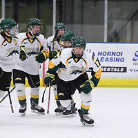 2nd year forward Lilla Carpenter-Boesch (17) of the Regina Cougars in action during the Women's Hockey home game on February 9 at Co-operators arena. Credit: Arthur Ward/Arthur Images