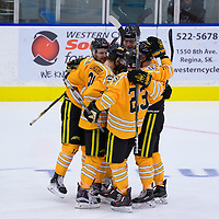 Regina Cougars celebrate during the Shine On game on October 28 at The Co-Operators Arena. Credit: /Arthur Images