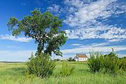 Tree and abandonned church on the prairie<br /> Neidpath<br /> Saskatchewan<br /> Canada
