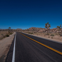 Park Boulevard, Joshua Tree National Park, California