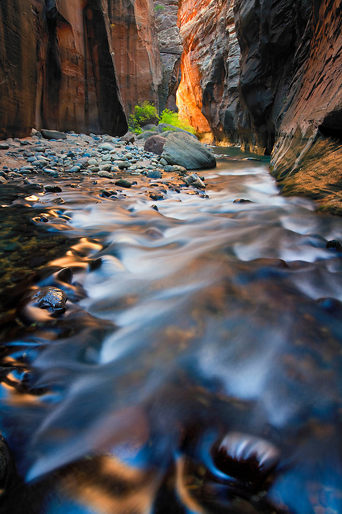 Reflections deep within the Virgin River Narrows, Zion National Park, USA.
