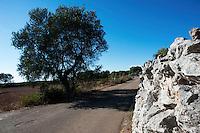 Litoranea Adriatica tra Santa Maria di Leuca e Località Ciolo..Strade stradine e percorsi